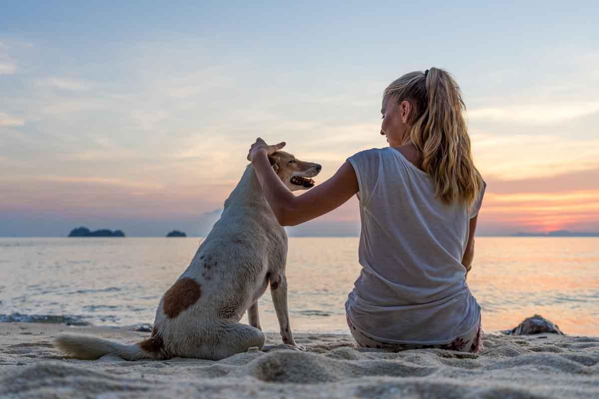 genieten met hond op strand zeeland